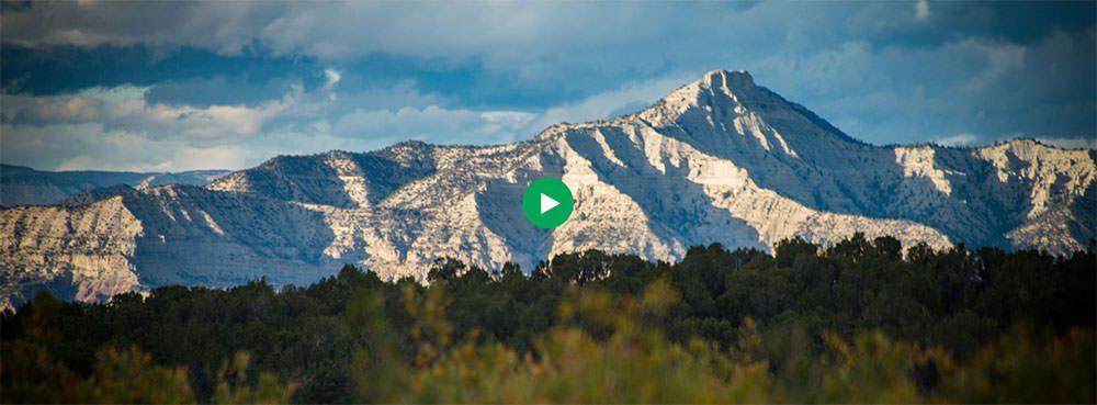 GB Sciences Harvests the First Hemp Crop in Colorado - GB